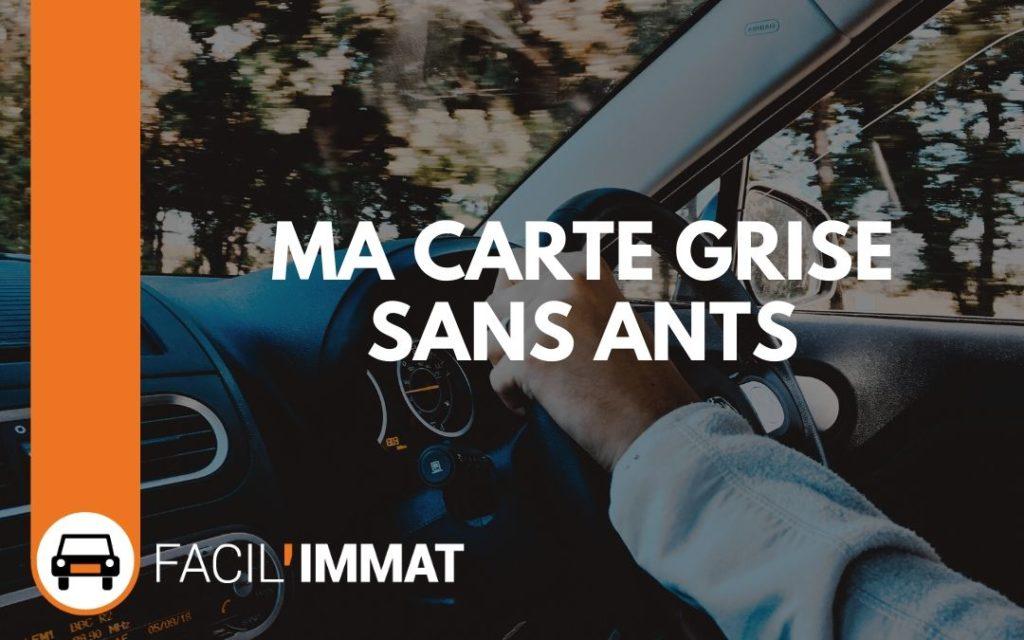 carte grise ants